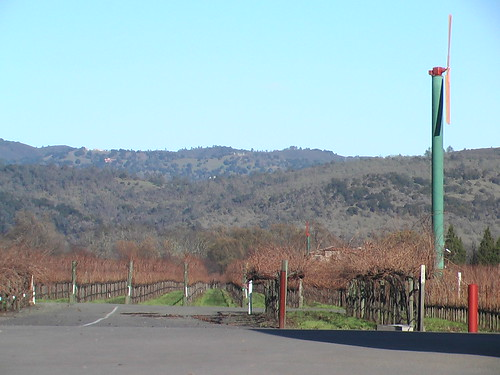 Into the hills from Cakebread