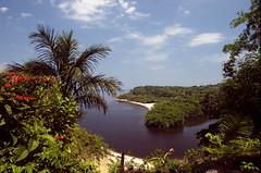 Brazil's Amazon River