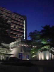 35.The Metropolitan酒店夜景 (1)