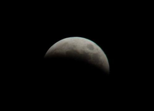 Eclissi lunare lrosa