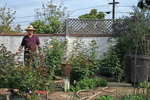 Mr Opie_Jeanne in his rose garden