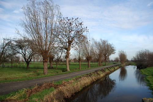 dutch landscape, Schiedam, the Netherlands