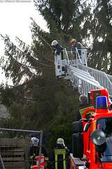 Orkan über Wiesbaden - Die Tage danach