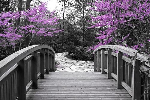cc image courtesy flickr.com/photos/wisdoc