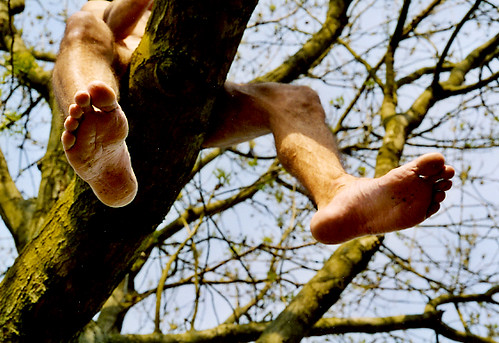 naked on the tree !!