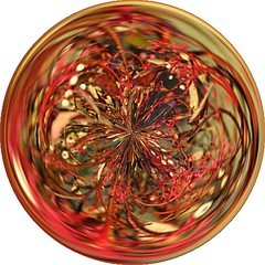 thicket image in a circle