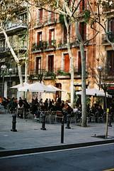 squares in Gracia