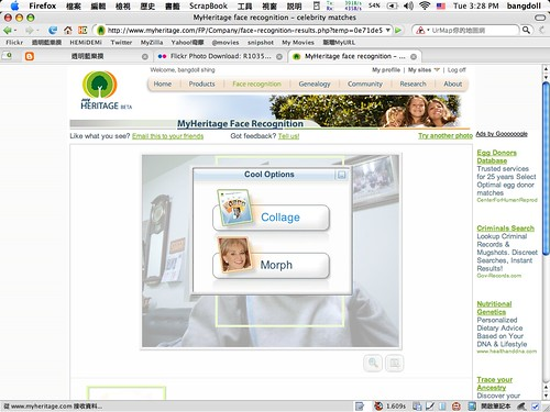 MyHeritage face recognition - 04.png