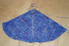 Shawl_2007Jan01_IcarusInProgress