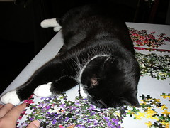 Puzzles are exhausting!