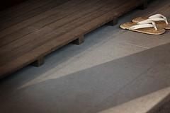Japanese Sandals [ 鶴岡八幡宮 / 鎌倉 ]