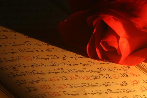 Qur\'an Rose