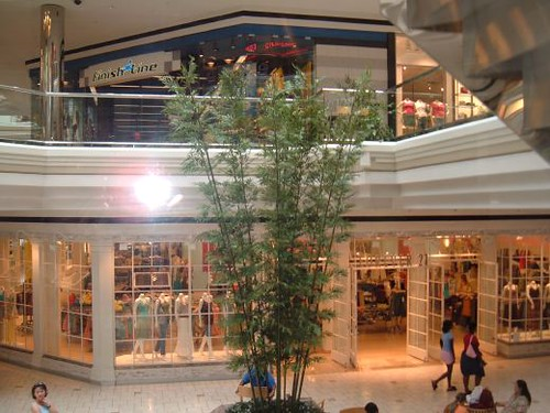 Mall Ants @ MacArthur Center
