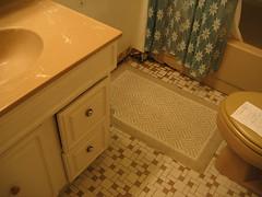 Old Ugly Bathroom (Before)