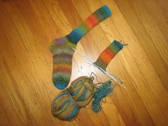 Socks_2007Apr1_Trekking100_WIP