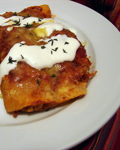 chicken enchiladas plated