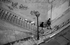 Leica28_23p.jpg