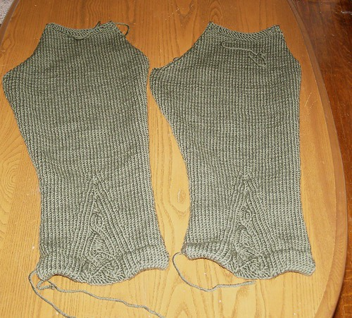 Finished Rogue Sleeves, sans cat