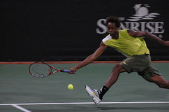 gael monfils - sunrise tennis