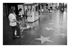 Leica37_06p.jpg
