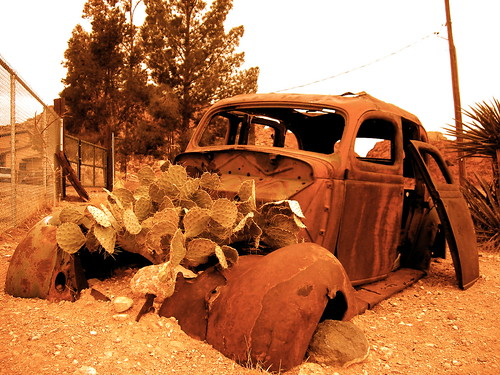 Old Rusty Car = Cactus Garden!