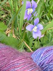 sea silk and violets