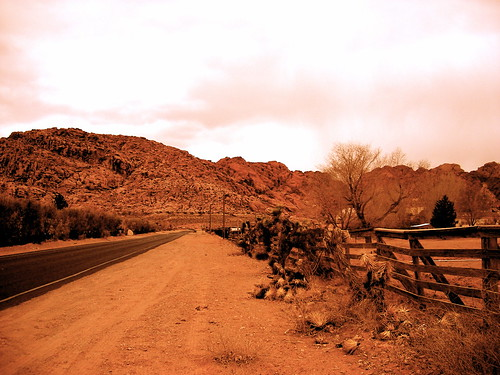 Entering Calico Basin
