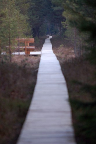 Eternal path