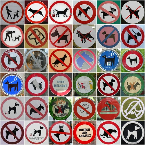 No dogs!