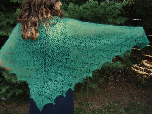 I love shawls - they can be SO pretty, like this one!  :)