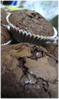 Funny looking brownie-muffins!