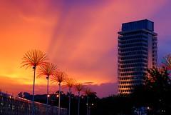 sunset @ the Parliament