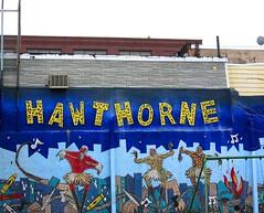 hawthorne-2