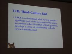 Sarah O'Keefe's presentation at Zurich STC con...
