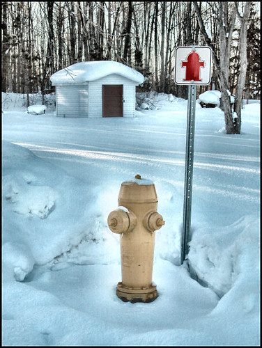 yellow hydrant advertising for a red hydrant girlfriend by William J. Gibson, the Canuckshutterer