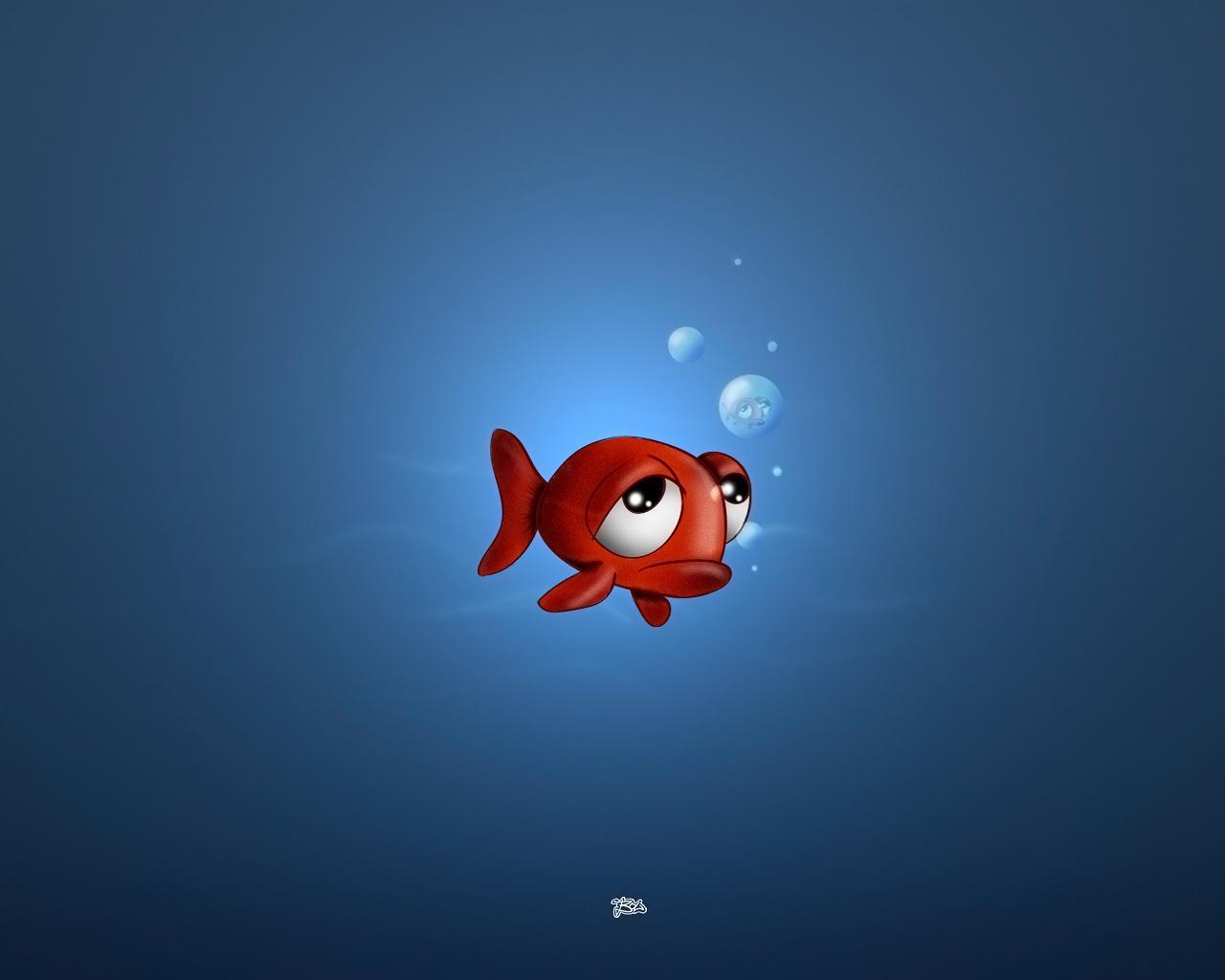 Sad fish wallpaper