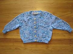 Sweater_2007Jan22_BlueRaglan_Trevor