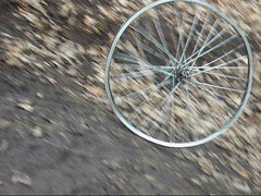 Wrecked bicycle wheel