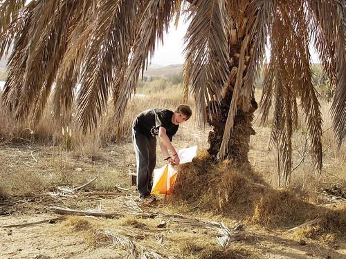 Negev_Desert_O, by D.Ravid, on Flickr
