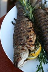 Grilled Branzino 1