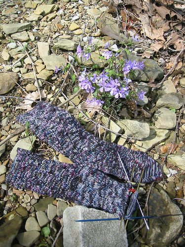 pot socks with flowers
