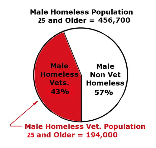 25 and older male homeless vets