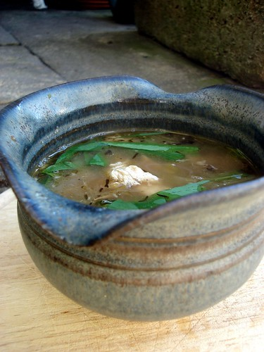 Wild Garlic and Chicken Soup