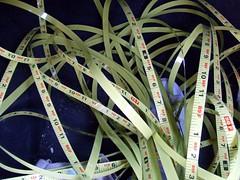 100 Feet of tape measure