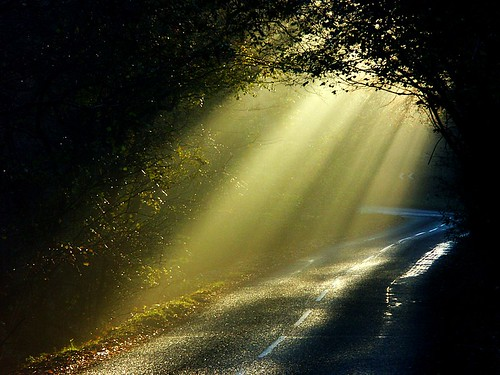 Light on the road