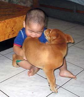 Baby Biting A Dog