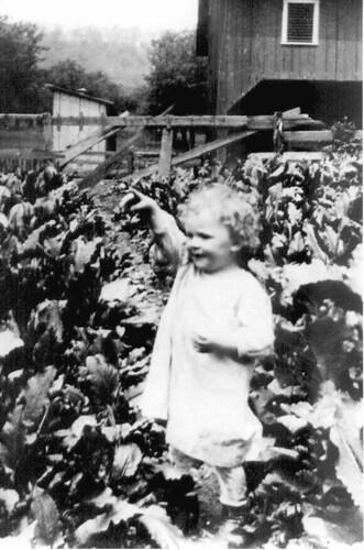 Charles Schroyer in the garden