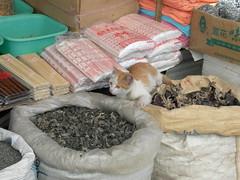 Lijiang Market 10