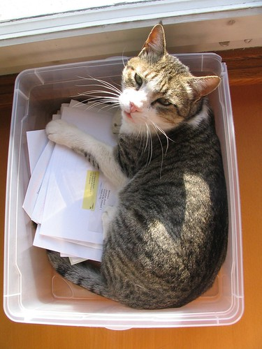 Redirected snail mail