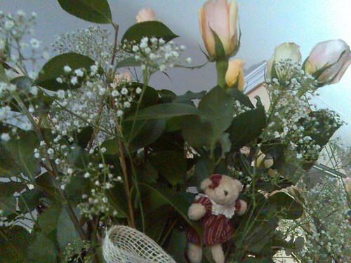 Rosas + regalo